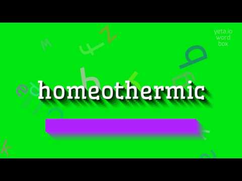 "How to say ""homeothermic""! (High Quality Voices)"