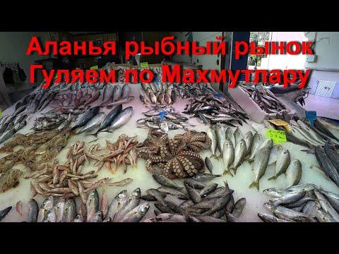 Рыбный рынок Гуляем по Махмутлару