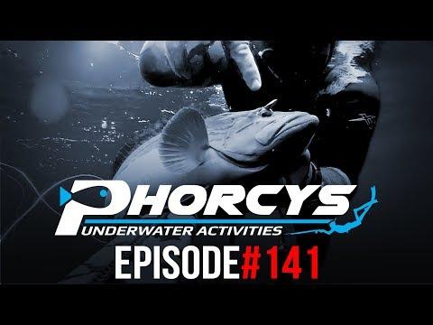 PHORCYS Spearfishing Worldwide Videos #141 - Underwater Activities 2019