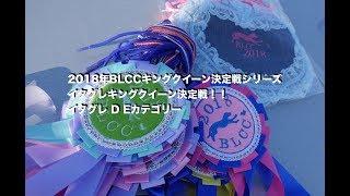 2018年 BLCCキングクイーン決定戦シリーズ イタグレキングクイーン決定...