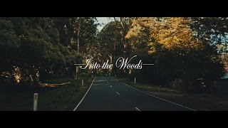[Videography] Into the Woods | Rocker Nguyen Cinematography (14-bit RAW)