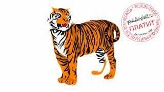 Как карандашом нарисовать домашнего тигра поэтапно(Как нарисовать тигра поэтапно карандашом за короткий промежуток времени. Видео рассказывает о том, как..., 2014-07-10T14:01:53.000Z)