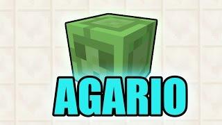 Minecraft BLOB WARS (AGAR.IO/AGARIO)