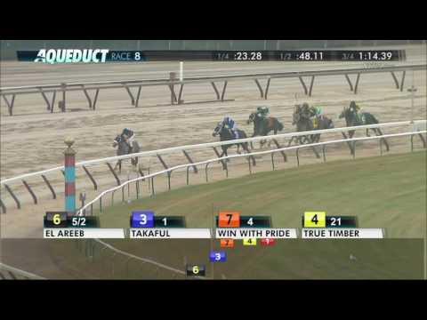El Areeb - 2017 Jerome Stakes