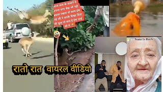 new zilli funy viral video//funy video//zili funy viral video//raato rat viral zili funy video