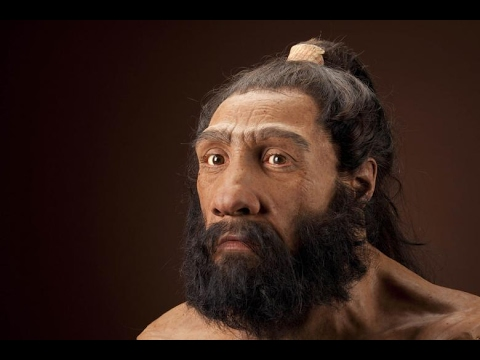 Neanderthals - The hid...