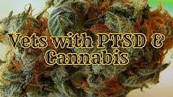 Vets with PTSD - Marijuana Laws & the VA