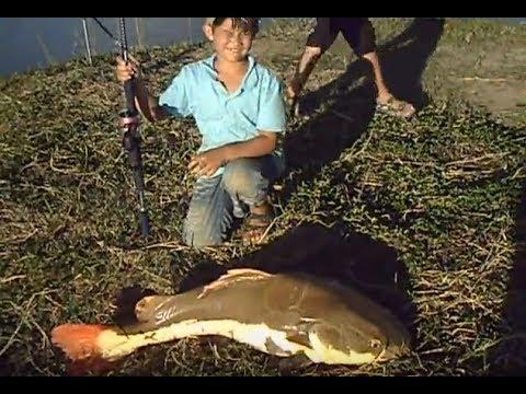 Doyan Mancing | Bocah Sukses Memancing Ikan Monster di Danau Thailand