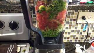 Ninja 1100 Blender Making Salsa  Pt. 2