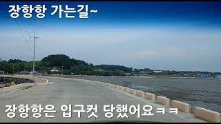 [Korean Road View]  장항항 가는길~!!…