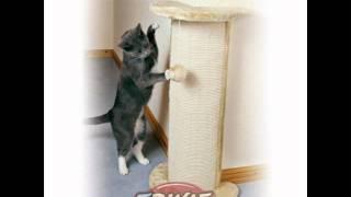 Когтеточки для кошек.wmv