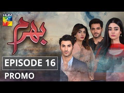 Bharam Episode #16 Promo HUM TV Drama