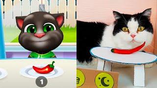 My Talking Tom in real Life VS Talking Tom in the Game screenshot 2