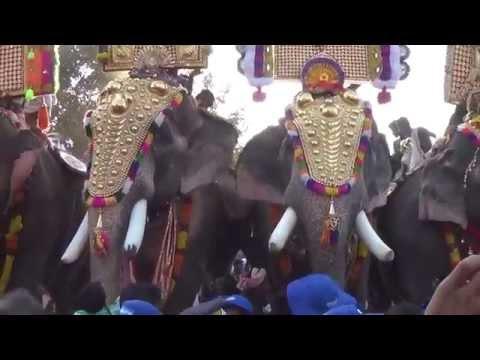 Thechikottukavu Ramachandran - Puthupally Kesavan at Chinakathoor Pooram
