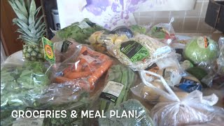 Asda Grocery Haul & Meal Plan 20th April