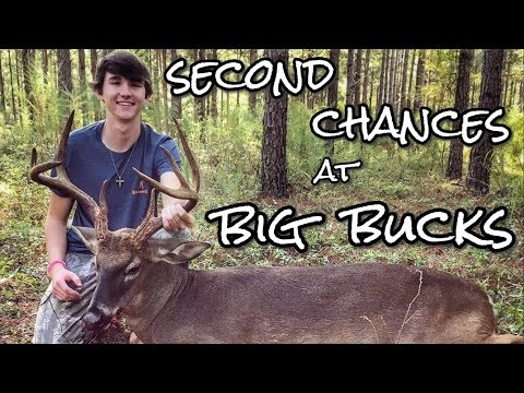 Georgia Bow Hunting - Big Buck Down