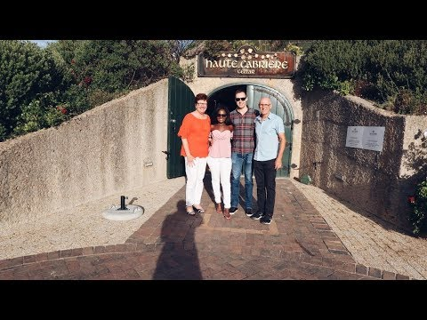 STELLENBOSCH WINE FARM INTERESTING STORY! | CAPE TOWN, SOUTH AFRICA
