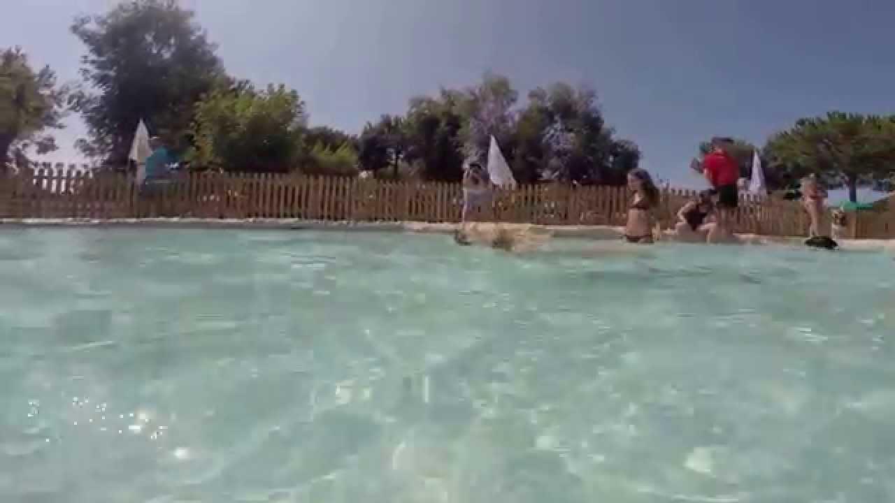 Piscina per cani ditellandia dog water park youtube - Piscina per cani ...
