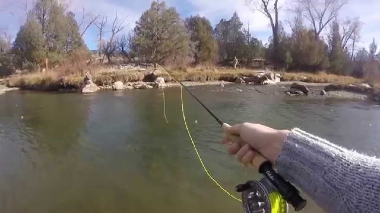 Fly fishing the uncompahgre river montrose colorado youtube for Buy colorado fishing license
