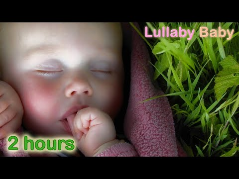 ☆ 2 HOURS ☆ Relaxing CELTIC MUSIC Instrumental ♫ NO REPEAT ☆ Beautiful and Relaxing Mix ☆