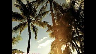 Yall ft Gabriela Richardson - Hundred Miles (lyric video)