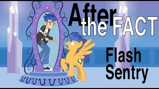After the Fact: Flash Sentry