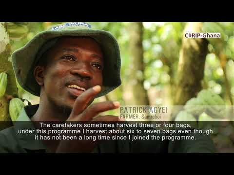 CORIP: Bridging the Service Delivery Gap in Cocoa Production