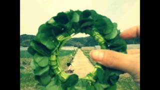 parariraさんとのコラボのために作ったものです。 youmeさんの写真『路草』をお借りしました。