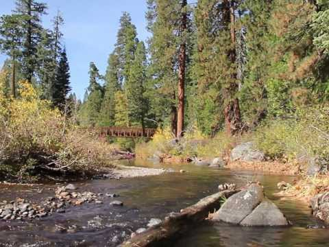 Fly Fishing The American River#1: Silver Fork