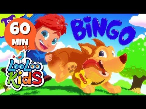 Bingo  Fun Songs for Children  LooLoo Kids