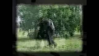 Win Reactor - Экспонат ( Ленинград Nu-metal cover ) на лабутенах нах
