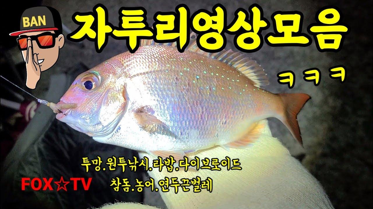 자투리영상모음/투망/원투낚시/다이브로이드-FOX☆TV