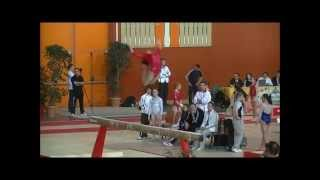 Gym artistique féminine Equipe de France pour les championnats du monde 2014