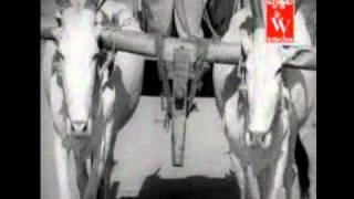Punarjanma - Kannadati nammodati kannu teredu nodu