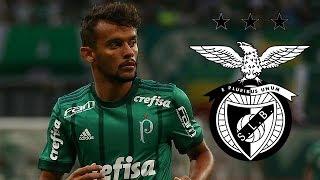 Gustavo Scarpa ● Welcome To SL Benfica? | Fluminense