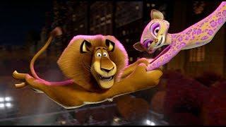 Зажигательная песня Katty Perry - Firework в мультфильме - Мадагаскар 3
