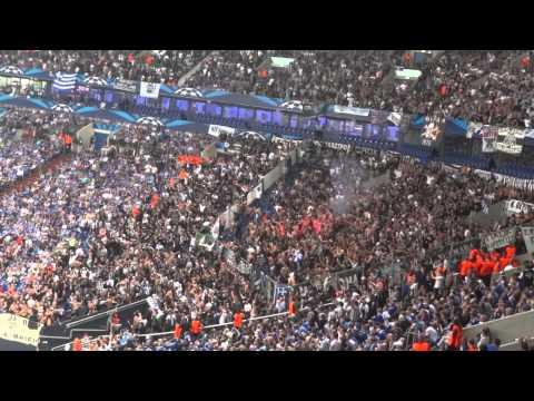 FC Schalke 04 - PAOK Saloniki, Jubel Nach Ausgleich