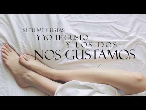 Yomil y el Dany - Al Grano (Video Lyric)