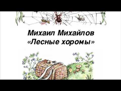 Мультфильм лесные хоромы