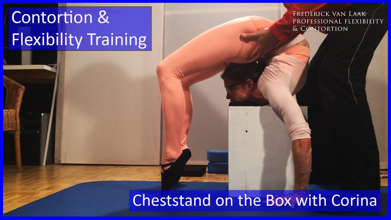 117 Flexyart Contortion Training: Cheststand on Box  - Also for Yoga, Pole, Ballet, Dance People