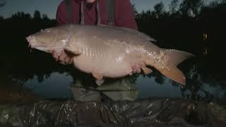 Рыбалка с берега Рыболов Анонс