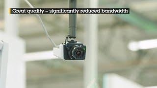 AXIS P1375 vidéo