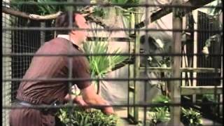 Zoo Tycoon 2   PC   Commercial  Trailer   2004   Microsoft