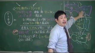 008 パルティアとササン朝(教科書25)世界史20話プロジェクト第01話