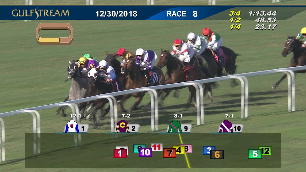 Horse Racing: - 225 horses at Belmont on Fri + Sat, coverage on