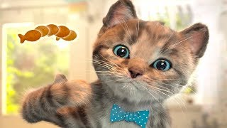Little Kitten & Friends - Learn with the cutest cat! - Pet Care Games For Children By Fox and Sheep