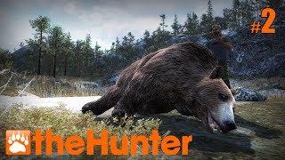 The Hunter #2   Бурый медведь