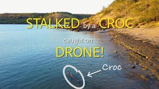 Stalked by a Croc Caught on Drone