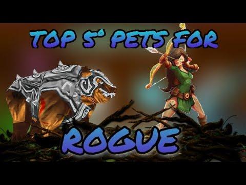 Top 5° Pets For Rogue - Arcane Legends