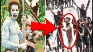 5 Mysterious Jungle Discoveries That Cannot Be Explained